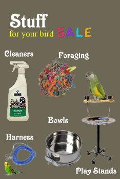 bird accessories