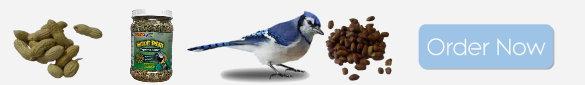 birdfoodbannerright