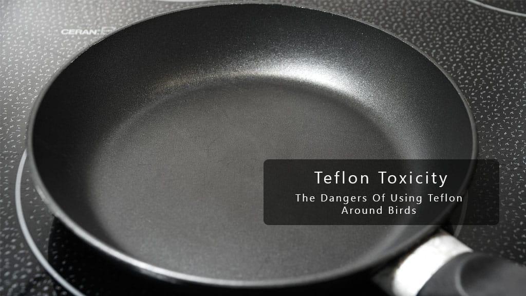Teflon Toxicity