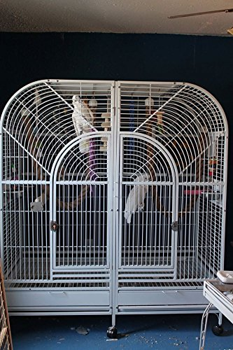 Double Macaw Parrot Cage Centurion Cages Large Bird