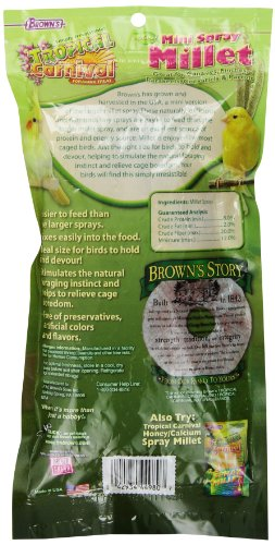 FMBrowns-Tropical-Carnival-Natural-Mini-Spray-Millet-4-oz-0-1