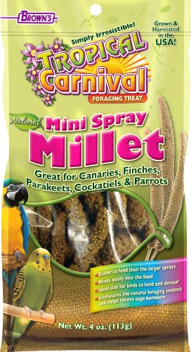 FMBrowns-Tropical-Carnival-Natural-Mini-Spray-Millet-4-oz-0