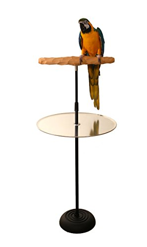 Parrot-Training-Perch-Stand-With-Potty-Tray-0