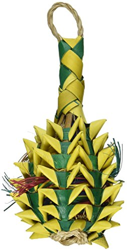 Planet-Pleasures-Pineapple-Foraging-Toy-0