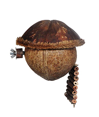 Prevue-Pet-Products-Naturals-Cozy-Cabana-Bird-Small-Animal-Toy-62813-0-0