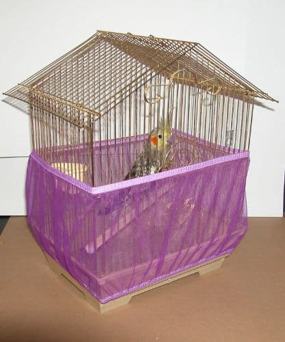Sheer-Guard-Bird-Cage-Skirt-Large-Size-0