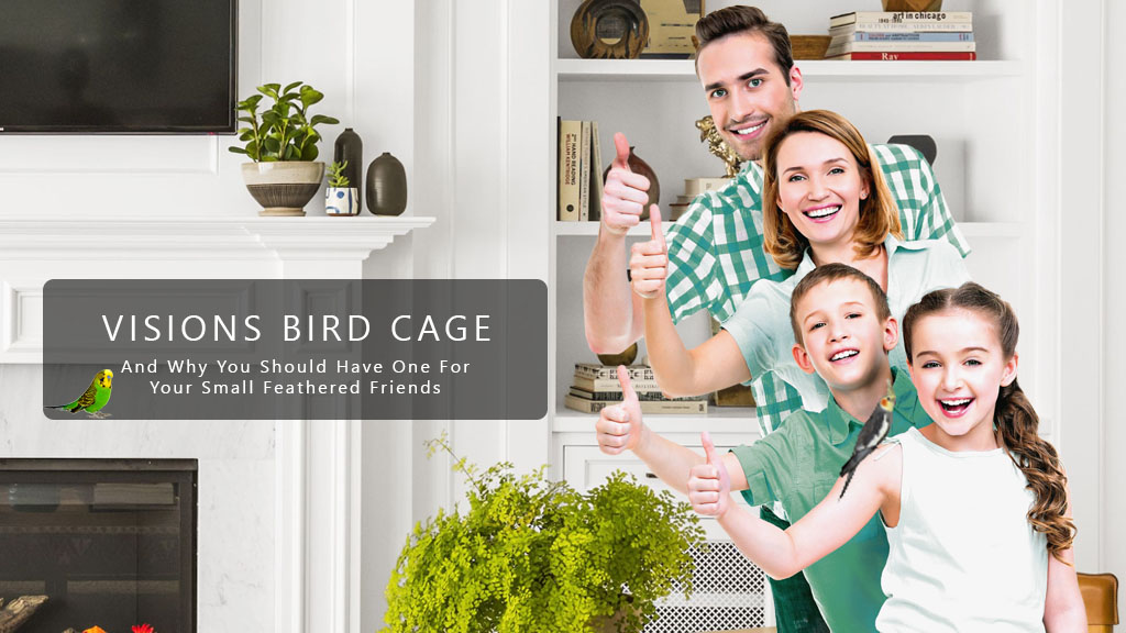 Visions Bird Cage Review
